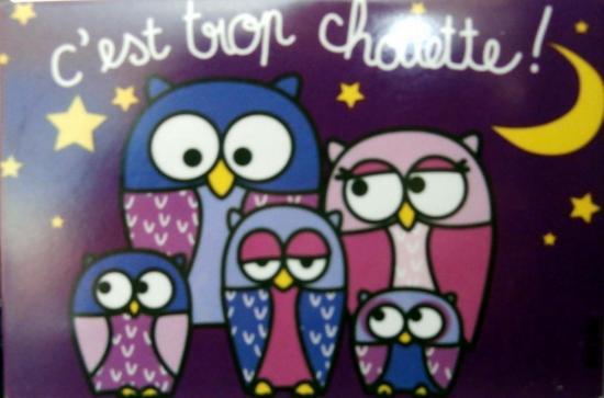chouettes-2012-12-23-a.jpg